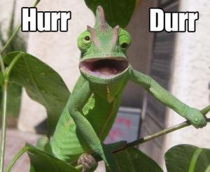 lizard-derp